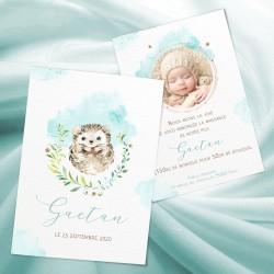 Faire-part naissance GAETAN bébé hérisson menthe